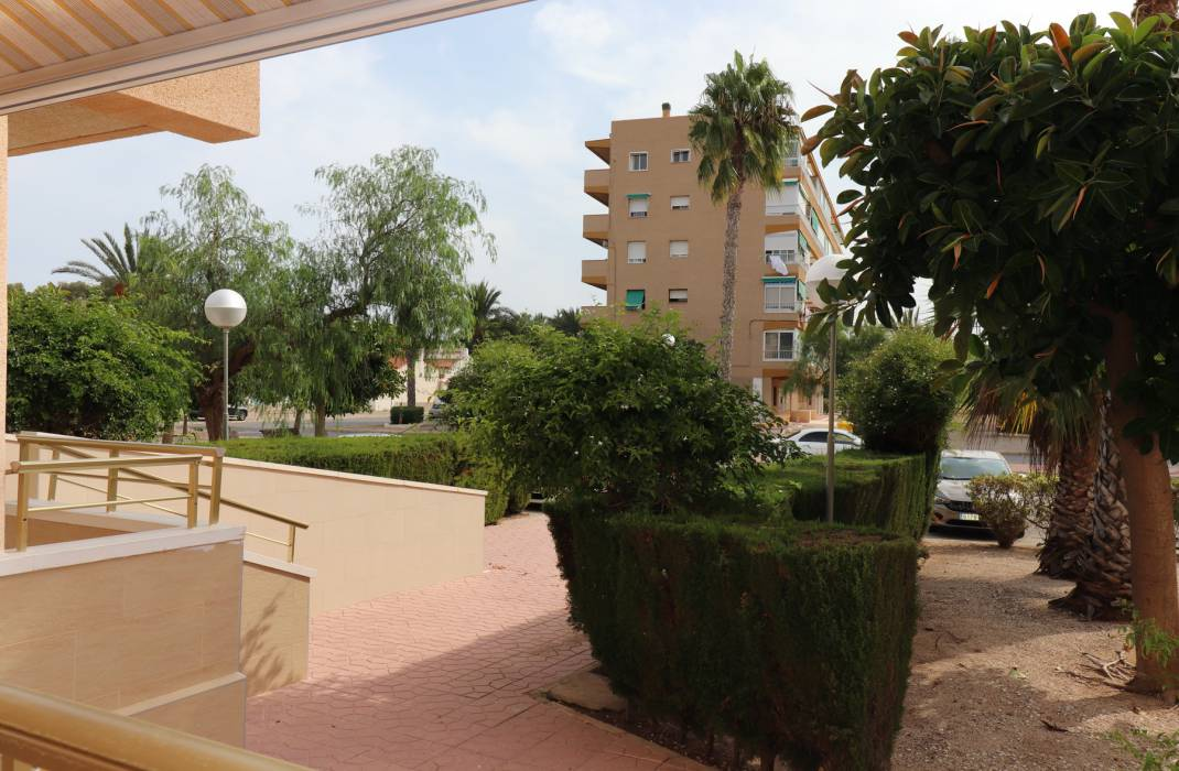 Venta - Apartment - Guardamar del Segura - Pinomar