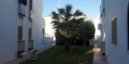 Venta - Apartment - La Mata